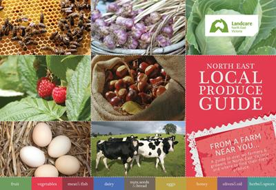 NE Local Produce Guide