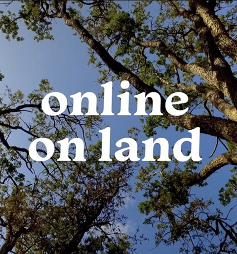"""An image of a blue sky through the tops of trees. The words """"online on land"""" are superimposed on top in a white serif font."""