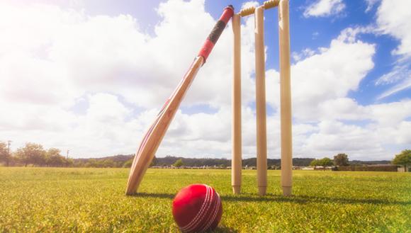 A cricket ball, bat and stumps