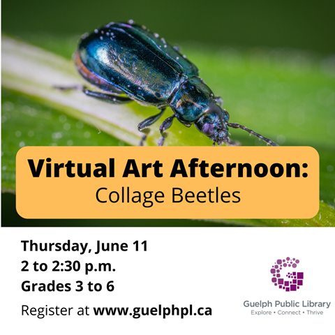 Create your very own unique beetle in our Virtual Art Afternoon for kids. Thursday June 11, 2 p.m., grades 3 to 6, register at https://guelphpl.libnet.info/event/4333556