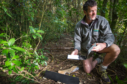 Ross Mayley sets up a rodent tracking tunnel