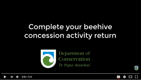 Screenshot of the beehive activity return video
