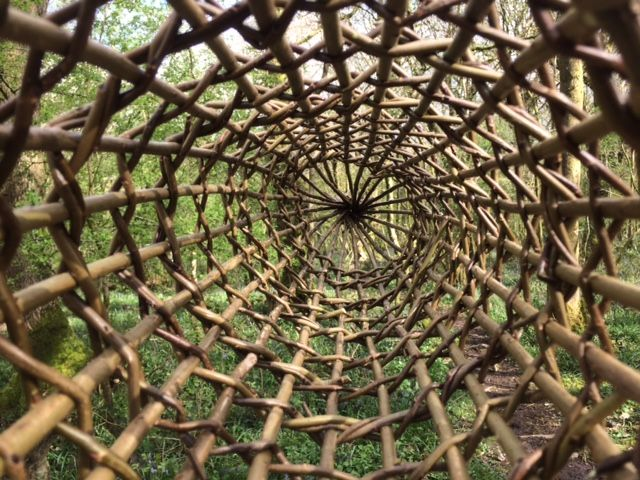 Willow fish trap