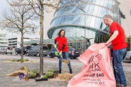 Dublin Docklands Volunteer Day