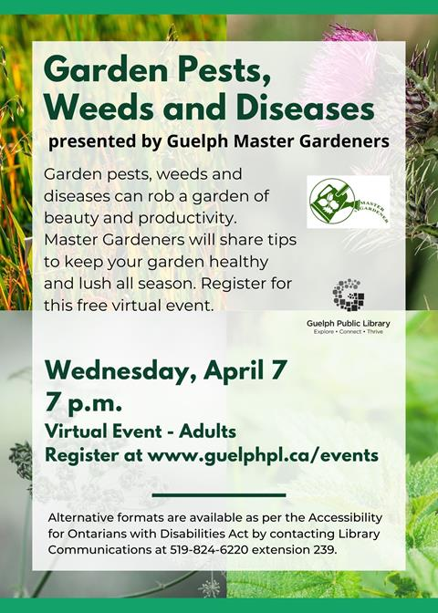 Library advertisement for the free, online event Garden Pests, Weeds and Diseases presented by Guelph Master Gardeners on Wednesday April 7 at 7 p.m. Registration is required.