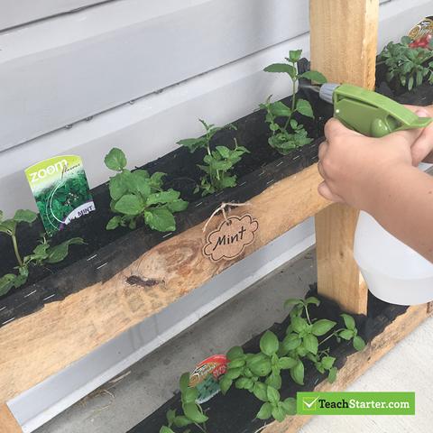 Create a Class Garden