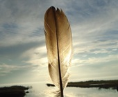 Feather held up against the horizon