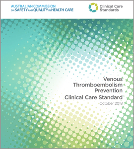 Cover of the VTE Prevention Clinical Care Standard.