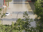 Flood resiliency: Insights from a survey of the Calgary business community