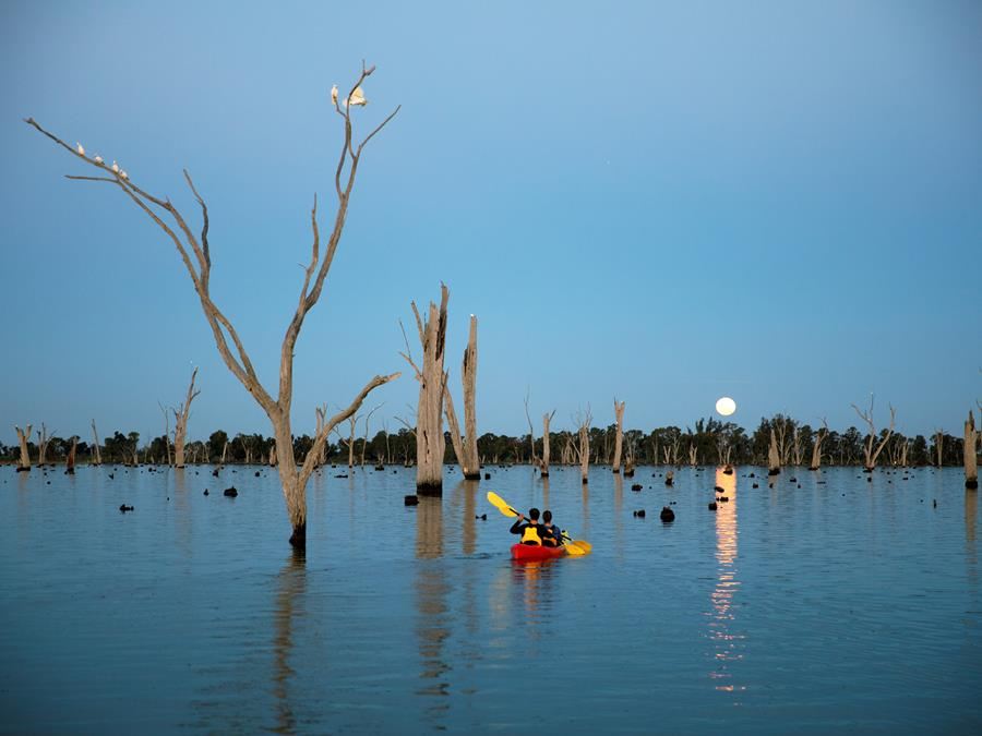 Kayaking on Lake Mulwala as the moon rises, in The Murray Region