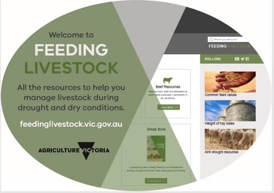 feeding livestock website