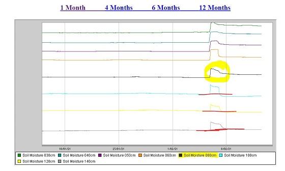 Tungamah soil moisture graph also has soil moisture improvements from 5 February rain.