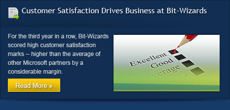 Customer Satisfaction Drives Business at Bit-Wizards