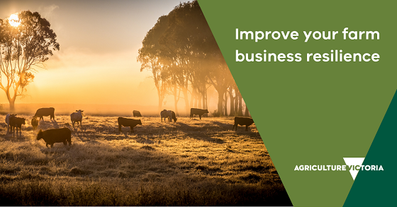 improve your farm business resilience