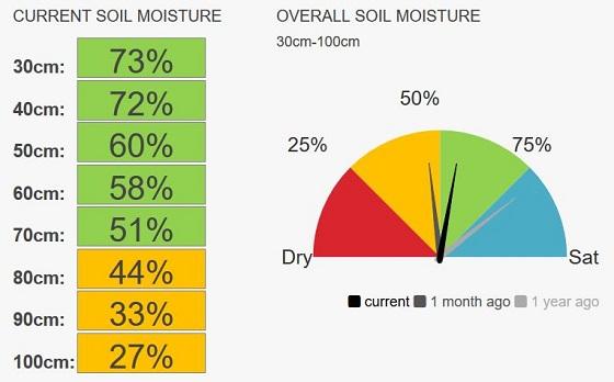 Coonooer Bridge soil moisture speedo at 47%.