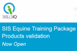 Equine Training Package