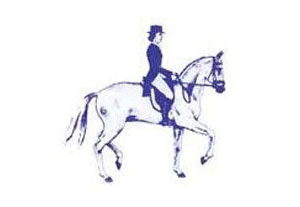 Melton Equestrian Academy – Best Performed Coloured Horse