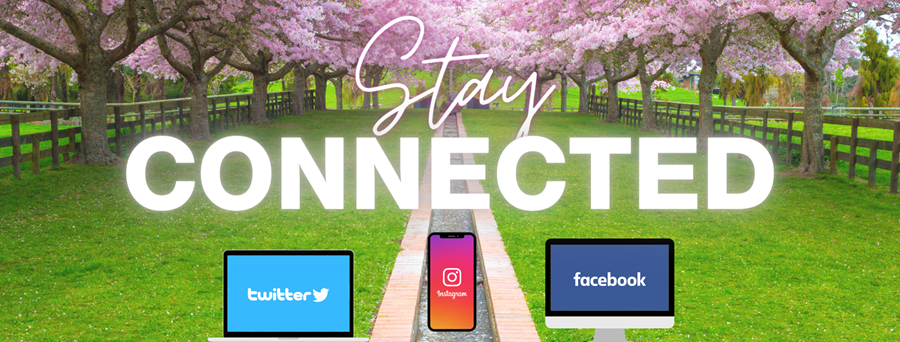 Stay Connected picture of social media
