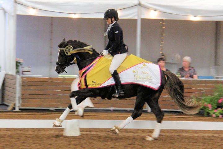 2019 Champion of Champions Young Dressage Pony was Charlie Sheen ridden by Danni Walliss.