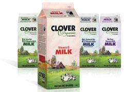 clover organic milk