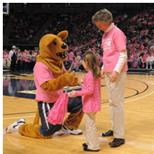 2010 Pink Zone Game