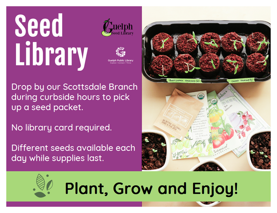 Drop by our Scottsdale Branch during curbside hours to pick up a seed packet. No library card is required. Different seeds are available each day while supplies last. Plant, Grow and Enjoy!
