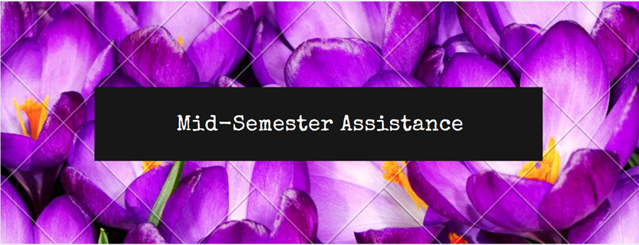 Mid-Semester Assistance