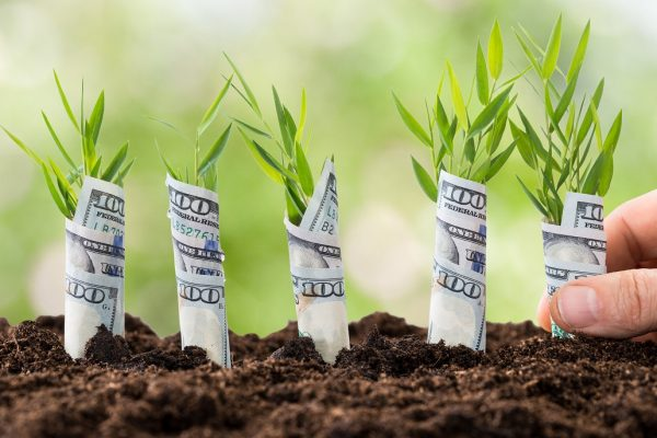 EQUITY CROWDFUNDING PLATFORMS ARE POPPING UP TO MAKE STARTUP INVESTORS OF US ALL