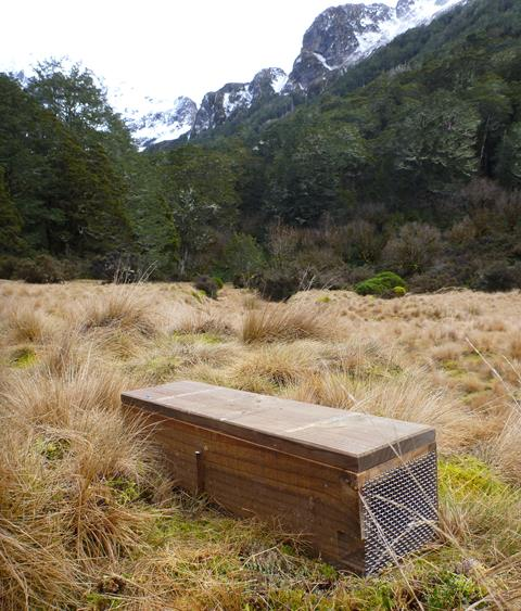 DOC 200 trap being installed in Point Burn, Te Puhi-a-noa / Murchison Mountains in 2012.  Photo credit DOC