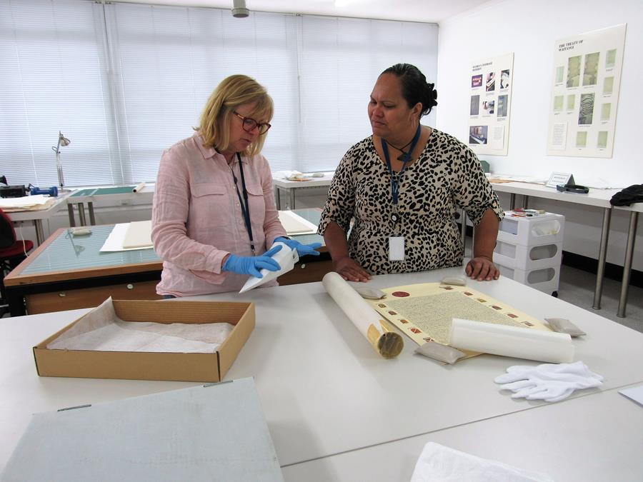 In the Conservation lab with Anna Whitehead