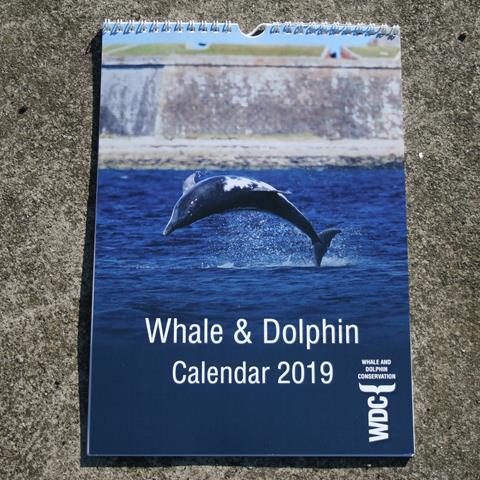 WDC calendar