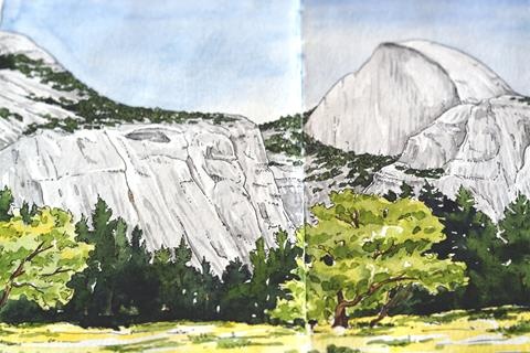 A close-up image of a watercolor painting depicting green grass, evergreen trees and granite Half Dome.
