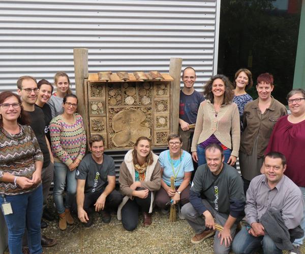 Collegas bouwen insectenhotel