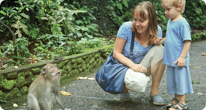Bali Monkey Forest Tour